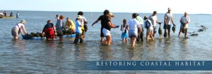 Restoring Coastal Waterways